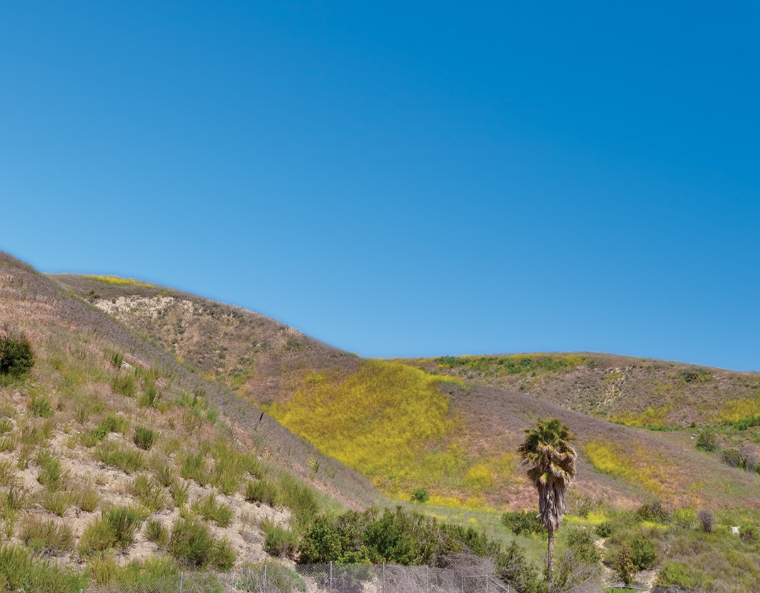 Malibu Canyon - Calabasas, CA - Hiking Area